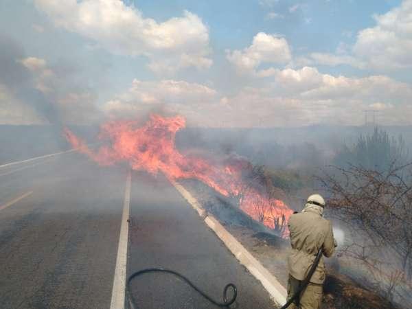 Bombeiros-debelam-incendio-em-vegetacao-na-BR-116-em-Limoeiro-do-Norte-2