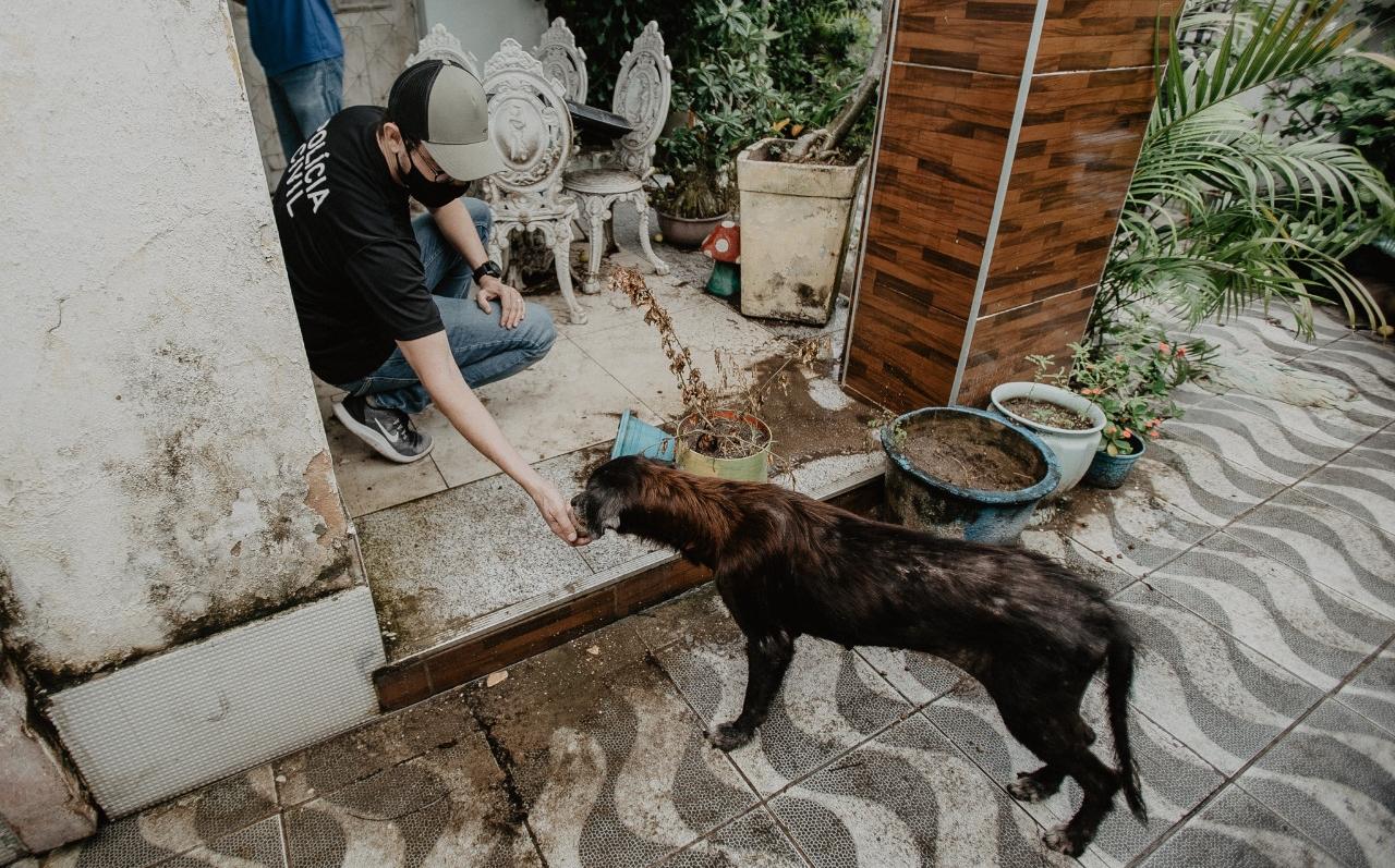 Abril Laranja alerta para os crimes de maus-tratos contra os animais